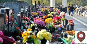 cementerios-espanoles-con-flores